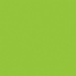 amtico colours pure plain kiwi